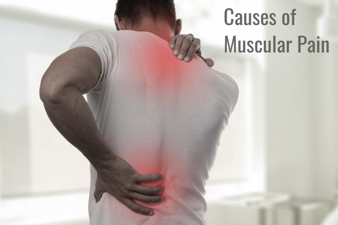 causes of muscular pain